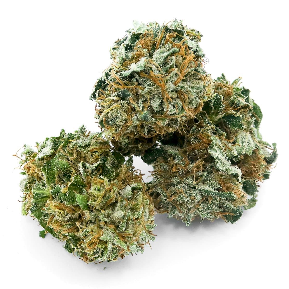 grossiste cbd suisse vente cannabis l gal prix achat weed en gros. Black Bedroom Furniture Sets. Home Design Ideas